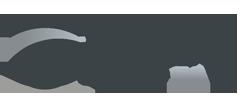 carinsuresa logo